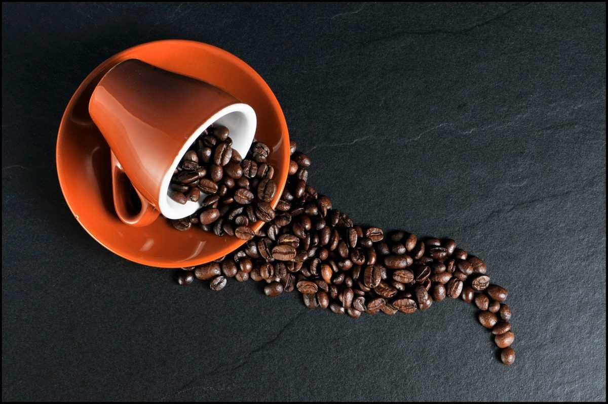 How Coffee Is Influencing the Human Body